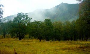 lembah lali jiwo gunung arjuno